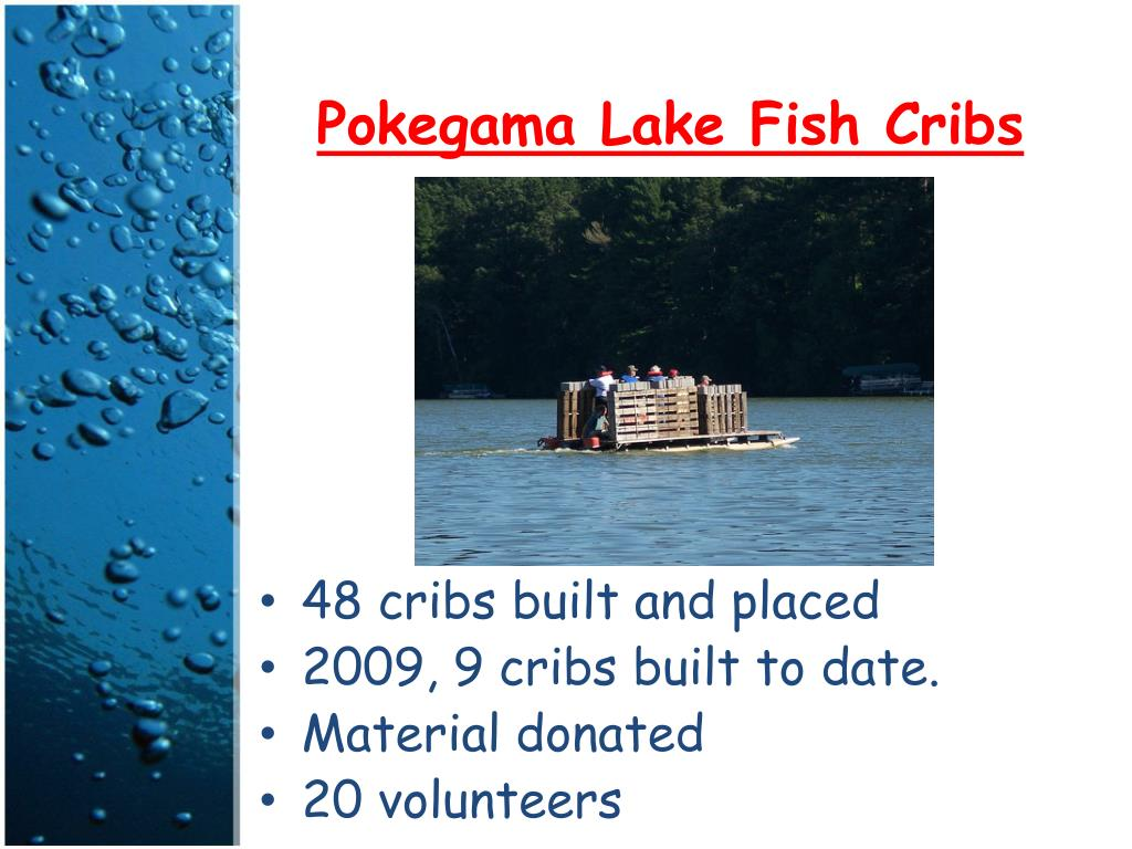 Pokegama Lake Fish Cribs