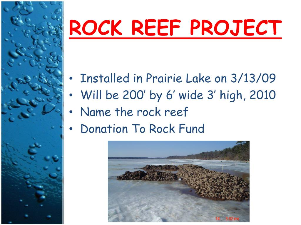 ROCK REEF PROJECT