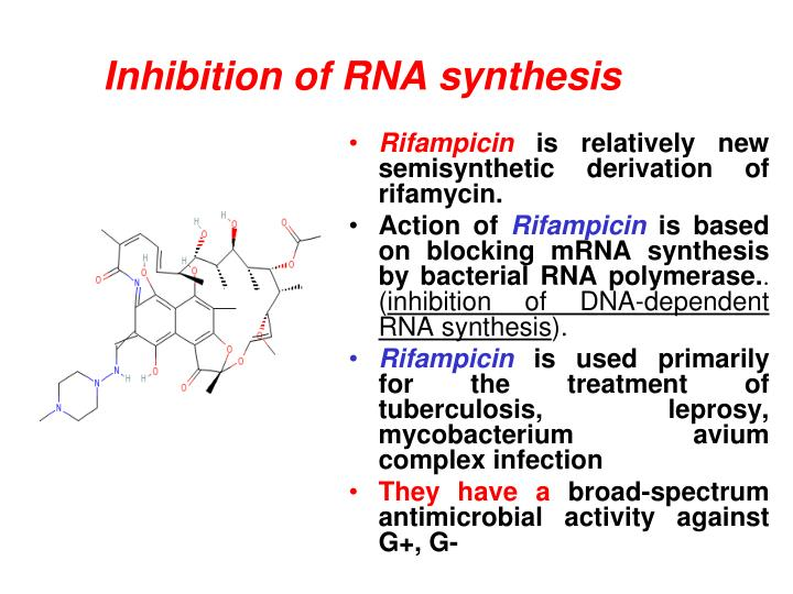 Inhibition of RNA synthesis