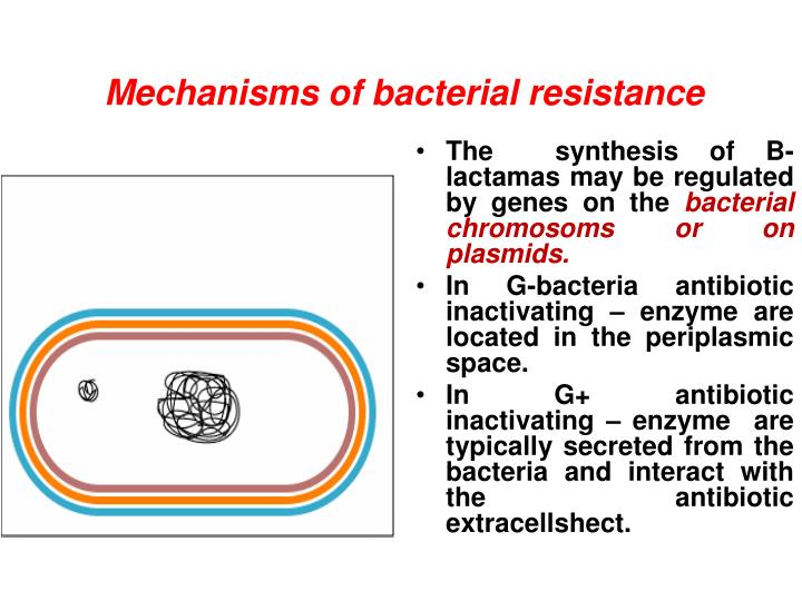 Mechanisms of bacterial resistance