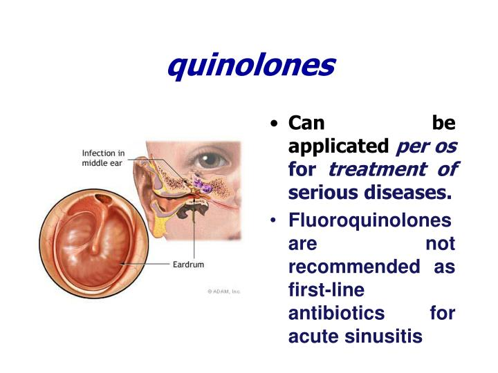 quinolones