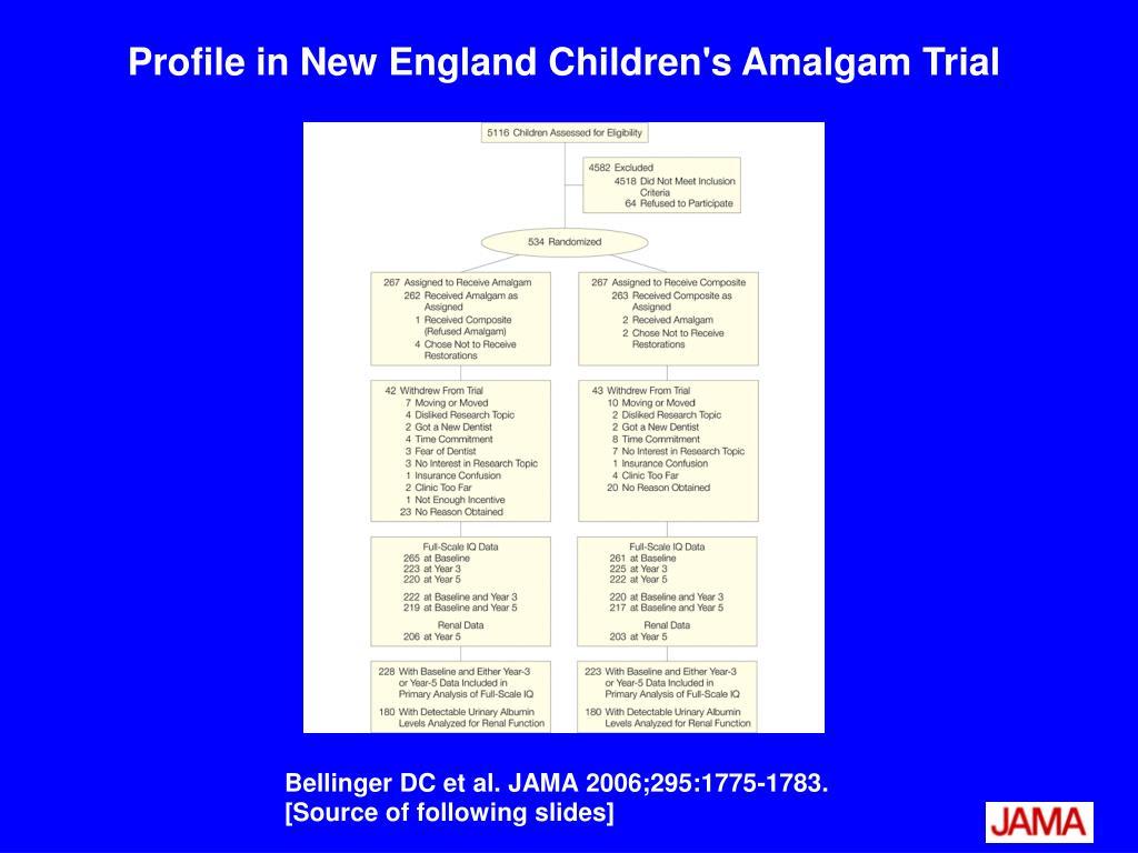 Profile in New England Children's Amalgam Trial