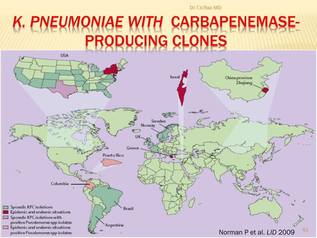 K. Pneumoniae with