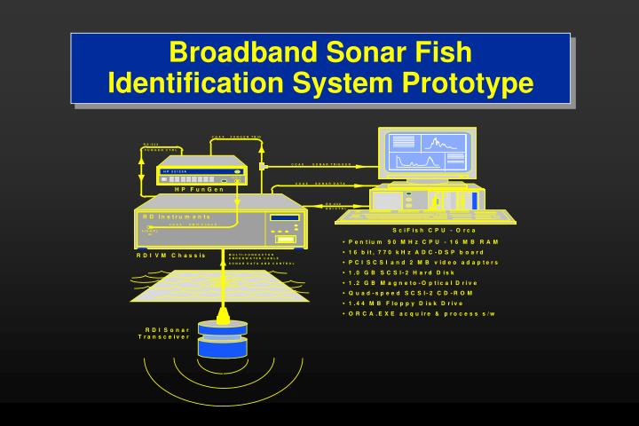 Broadband Sonar Fish Identification System Prototype