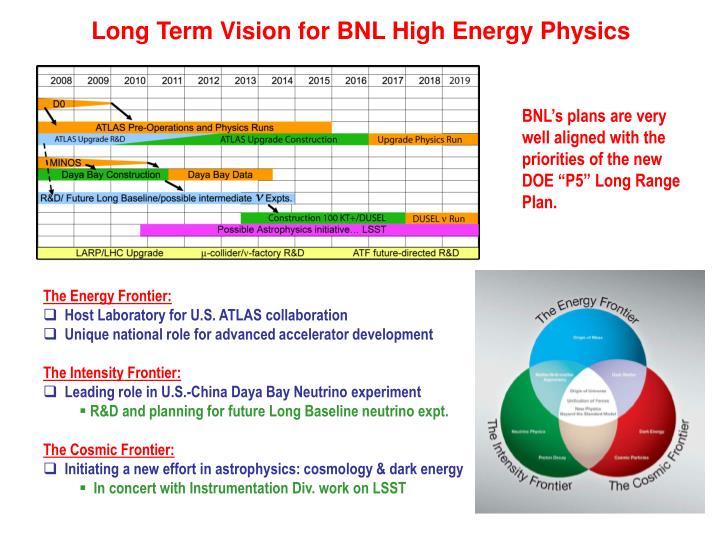 Long Term Vision for BNL High Energy Physics