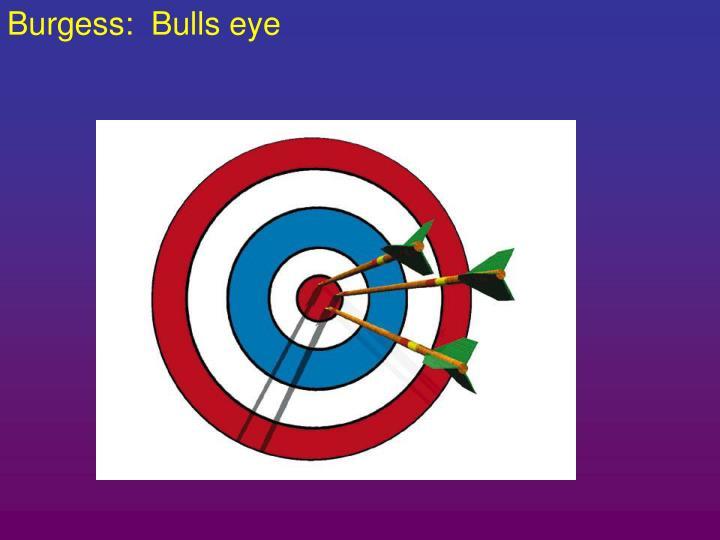 Burgess:  Bulls eye