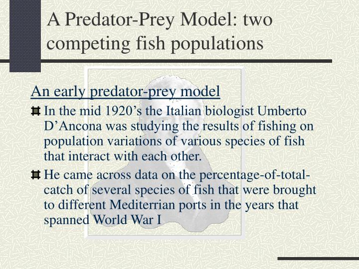 A Predator-Prey Model: two competing fish populations