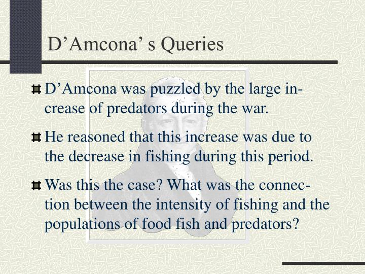 D'Amcona' s Queries