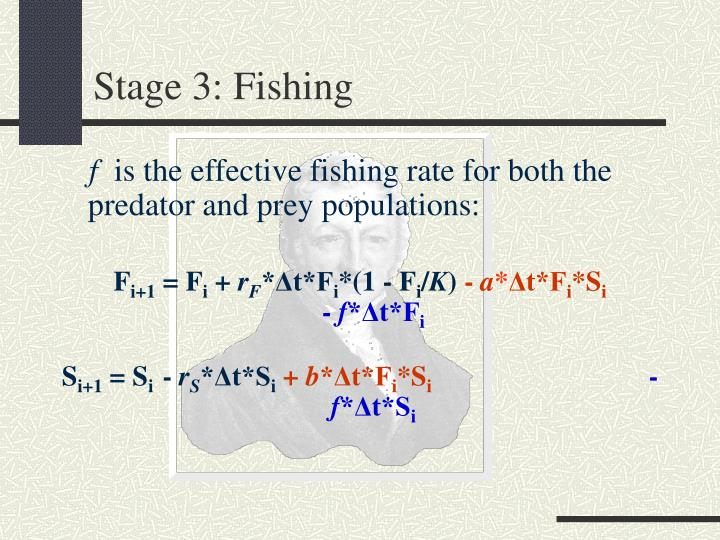 Stage 3: Fishing