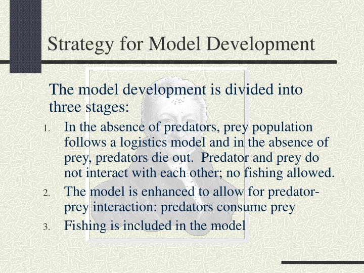 Strategy for Model Development