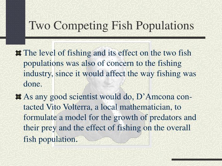 Two Competing Fish Populations