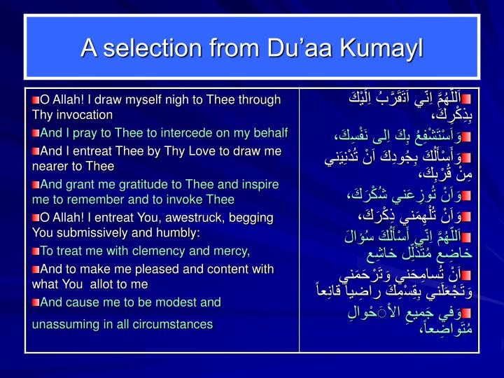 A selection from Du'aa Kumayl