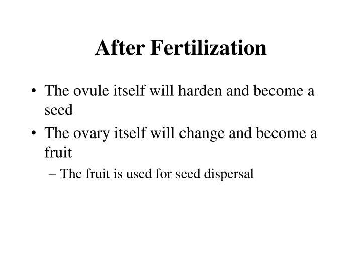 After Fertilization