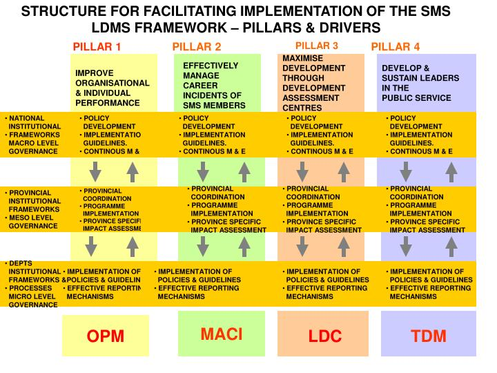 STRUCTURE FOR FACILITATING IMPLEMENTATION OF THE SMS LDMS FRAMEWORK – PILLARS & DRIVERS