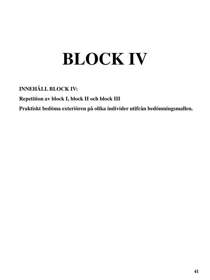BLOCK IV