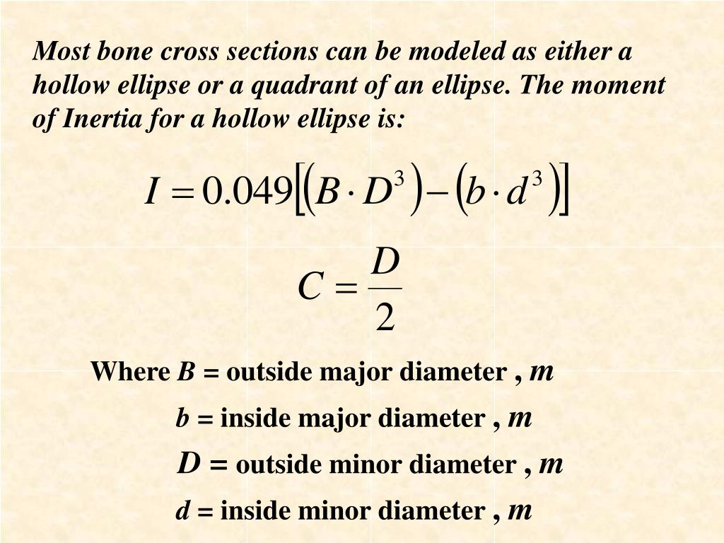 Most bone cross sections can be modeled as either a hollow ellipse or a quadrant of an ellipse. The m