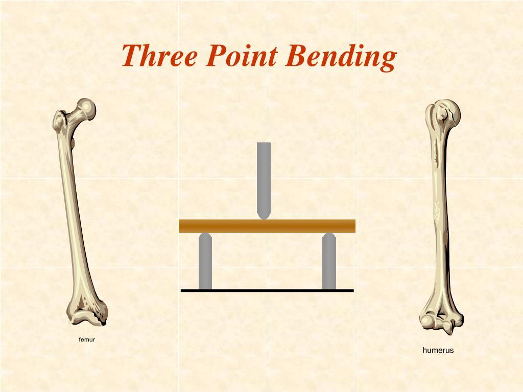 Three Point Bending