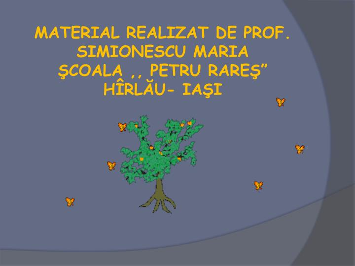 MATERIAL REALIZAT DE PROF. SIMIONESCU MARIA