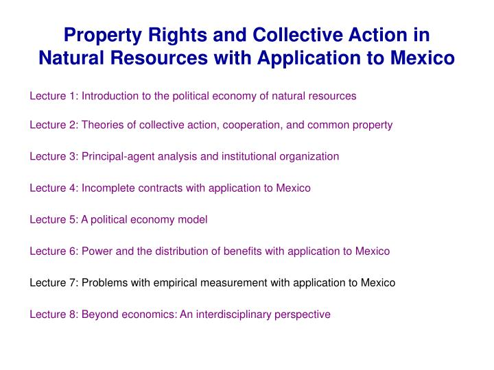 Property rights and collective action in natural resources with application to mexico