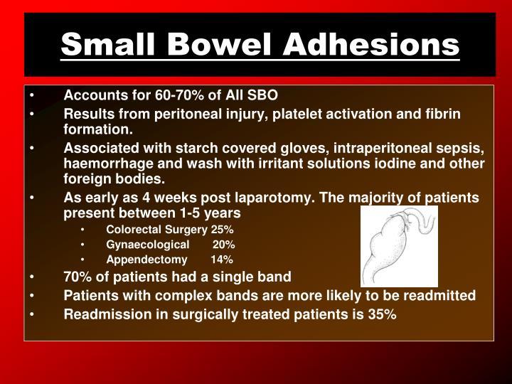 Small Bowel Adhesions