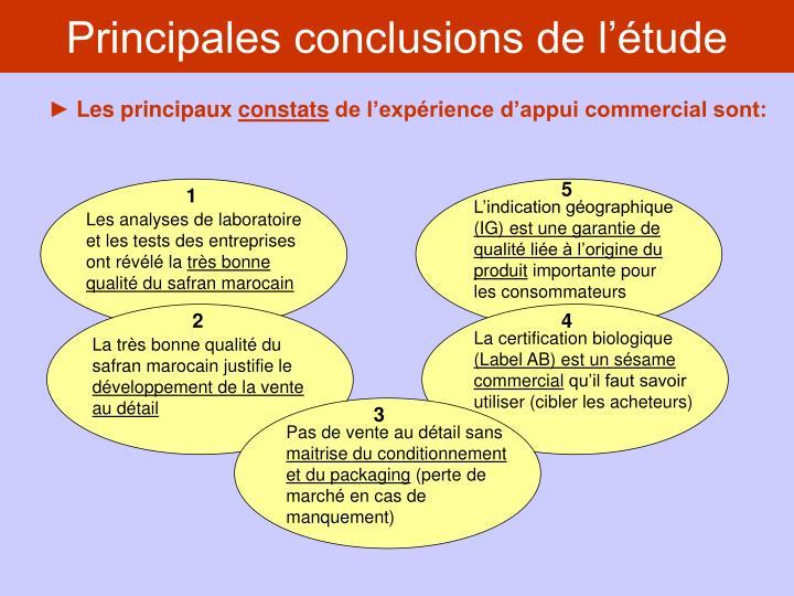 Principales conclusions de l'étude