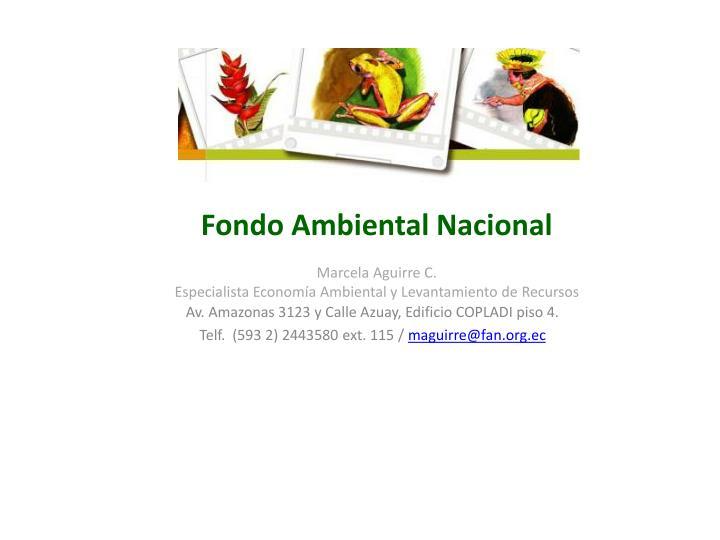 Fondo Ambiental Nacional
