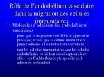 r le de l endoth lium vasculaire dans la migration des cellules immunitaires