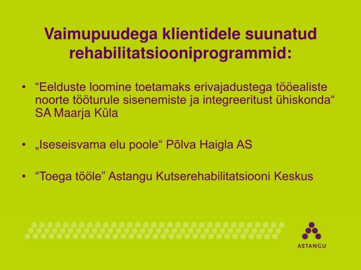 Vaimupuudega klientidele suunatud rehabilitatsiooniprogrammid: