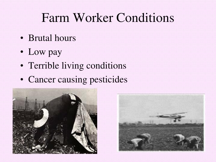 Farm Worker Conditions