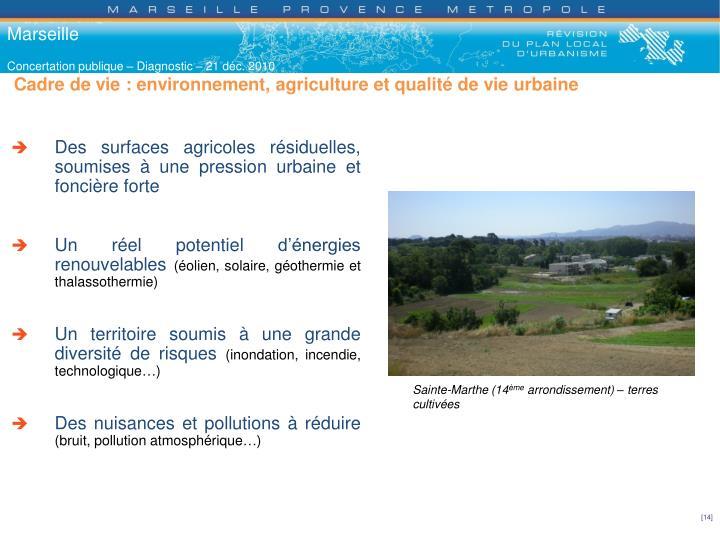 Cadre de vie : environnement, agriculture et qualité de vie urbaine