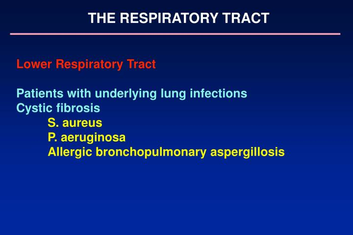 THE RESPIRATORY TRACT