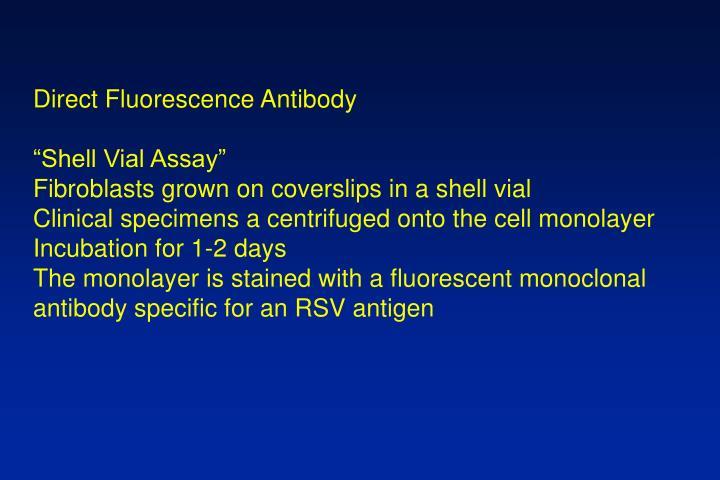 Direct Fluorescence Antibody