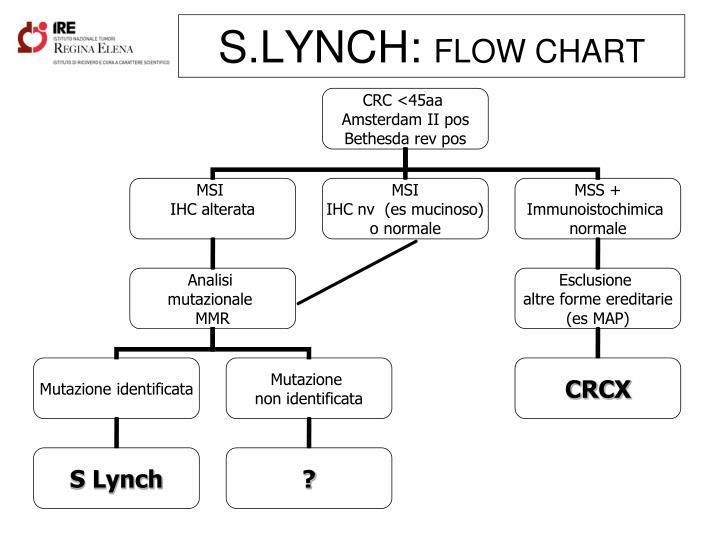 S.LYNCH: