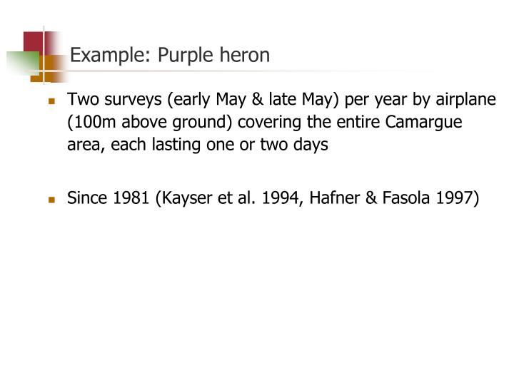 Example: Purple heron