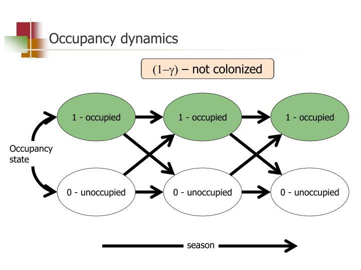Occupancy dynamics