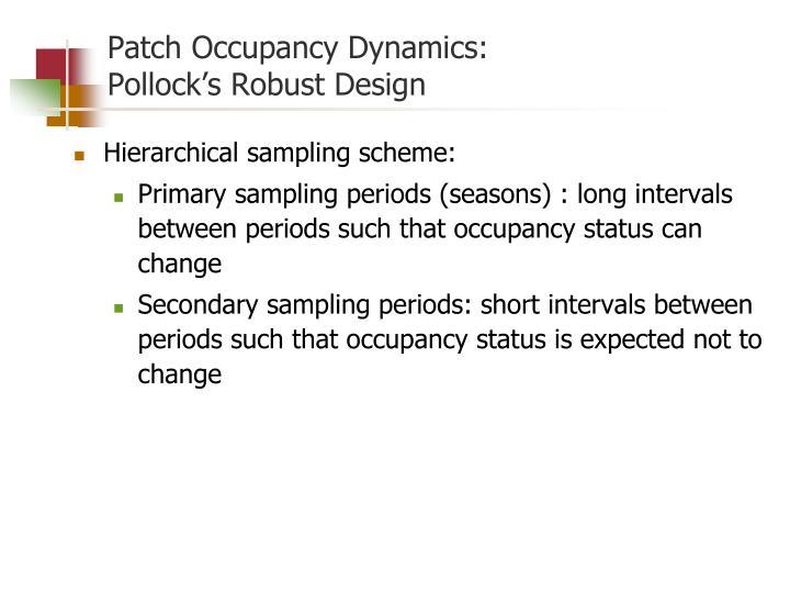 Patch Occupancy Dynamics: