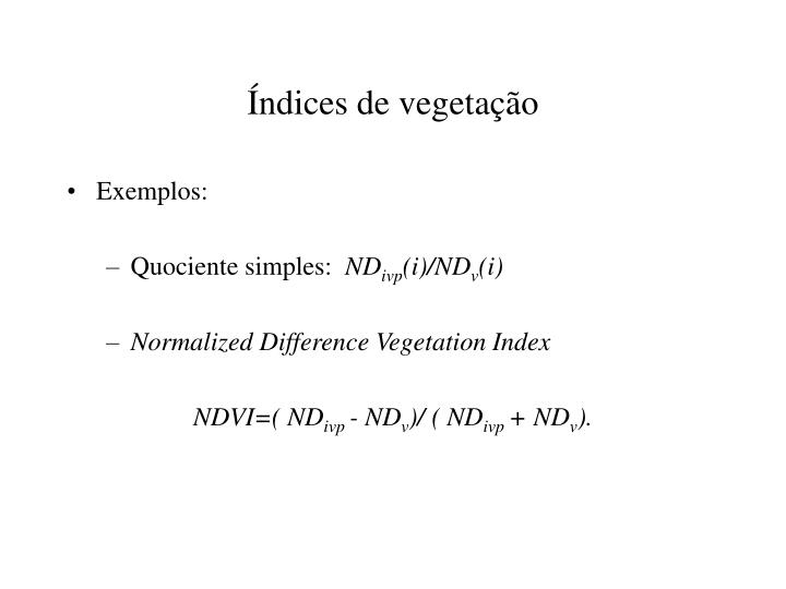 Índices de vegetação