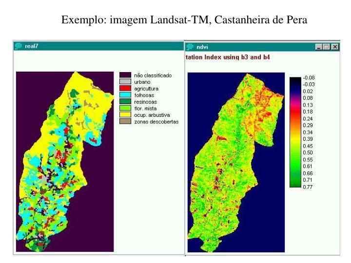 Exemplo: imagem Landsat-TM, Castanheira de Pera
