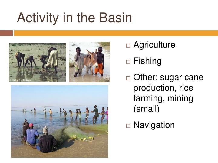 Activity in the Basin