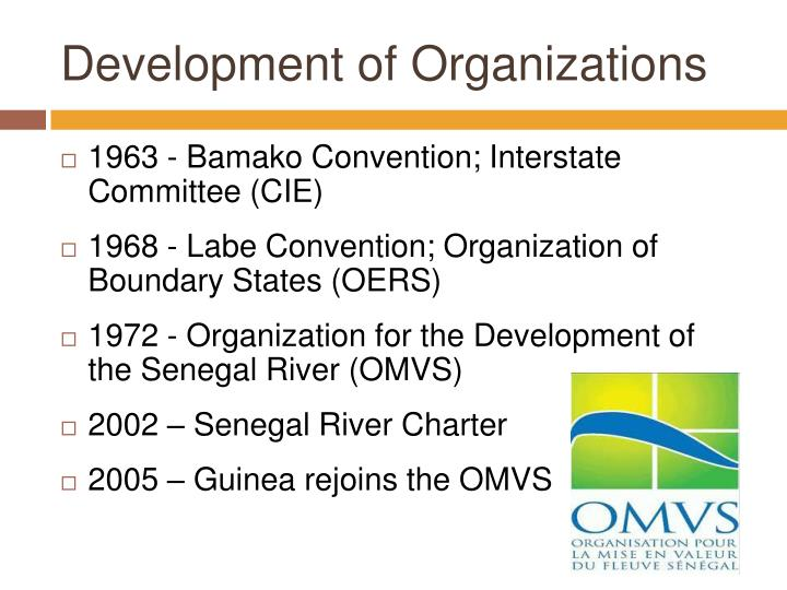 Development of Organizations