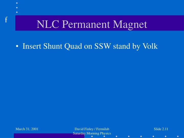 NLC Permanent Magnet