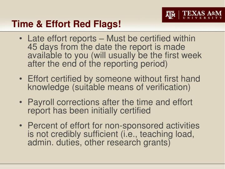 Time & Effort Red Flags!