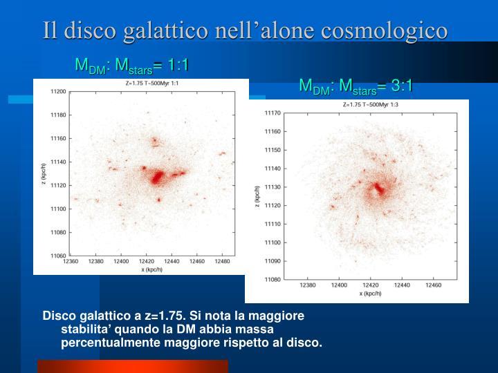 Il disco galattico nell'alone cosmologico