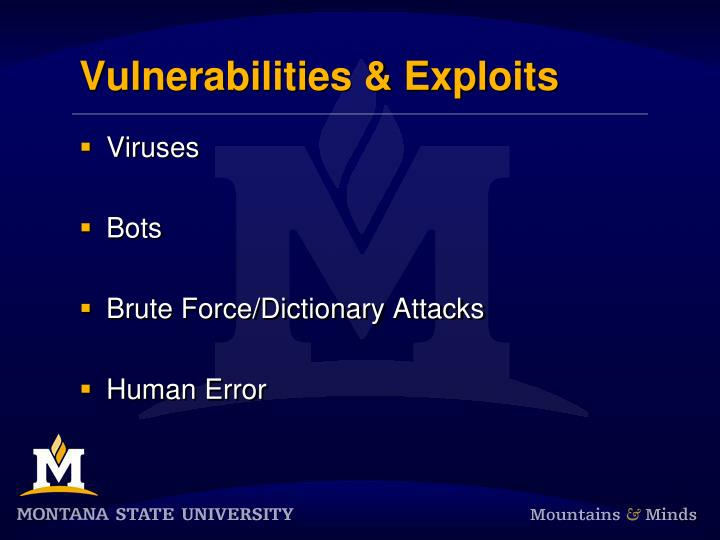 Vulnerabilities & Exploits