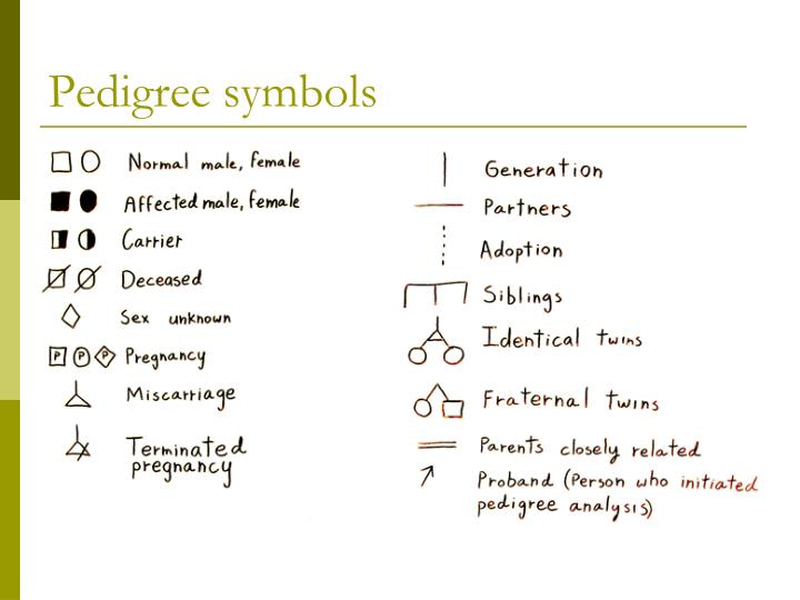 Pedigree symbols