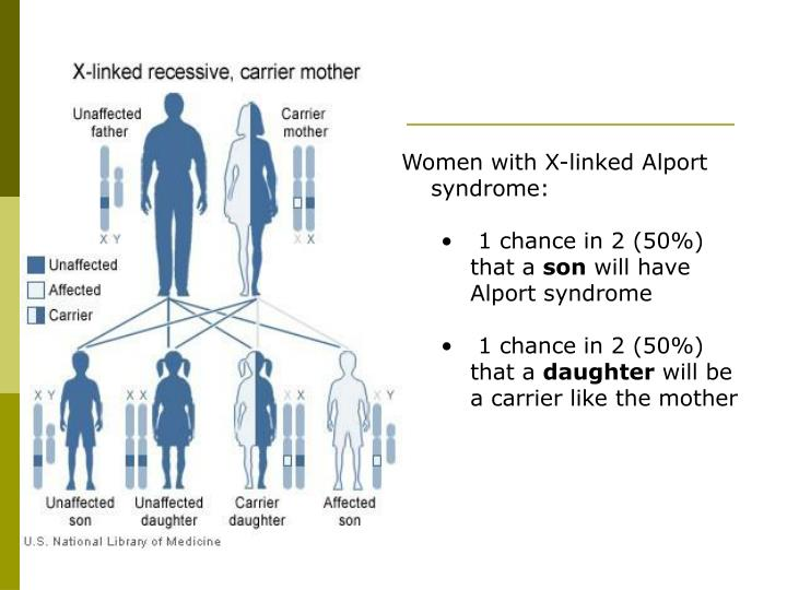 Women with X-linked Alport syndrome: