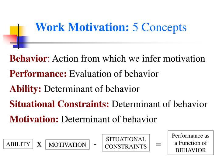 Work Motivation: