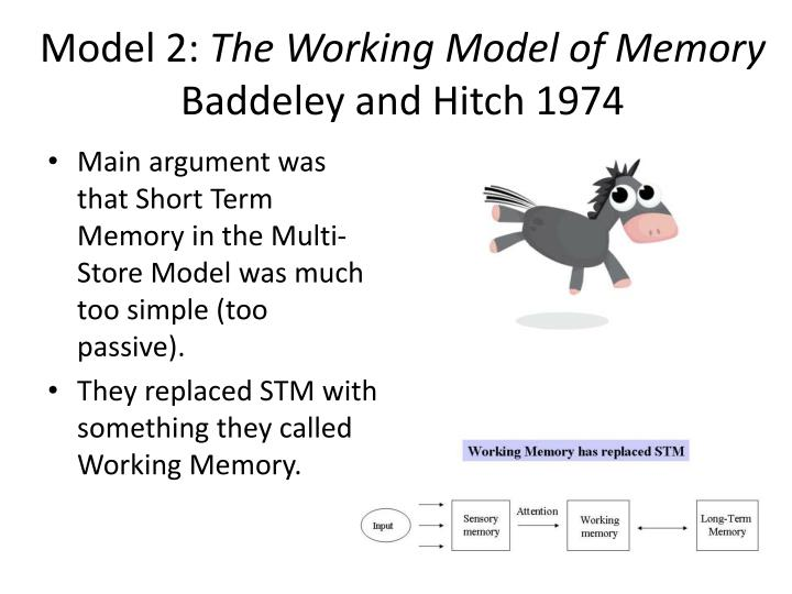 Model 2 the working model of memory baddeley and hitch 1974
