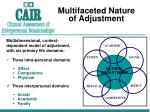multifaceted nature of adjustment