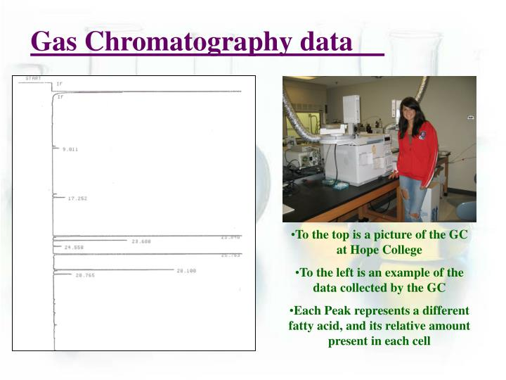 Gas Chromatography data